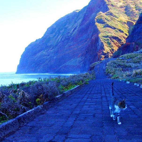 Madeira59